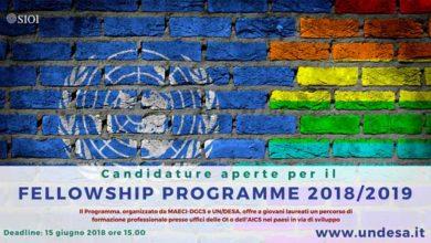 fellowships programme
