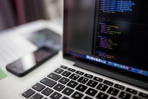 informatici sviluppatori